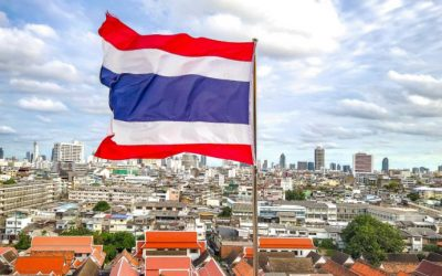 Thailand Bans Meme Coins, Fan Tokens, NFTs From Trading on Crypto Exchanges